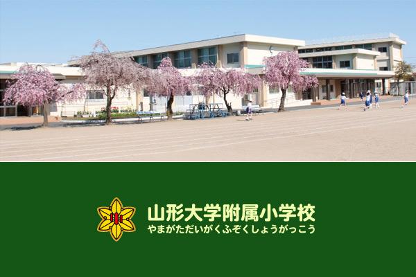 小学校 山形 大学 附属